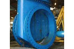 Seguro Resilient Seated Gate Valve